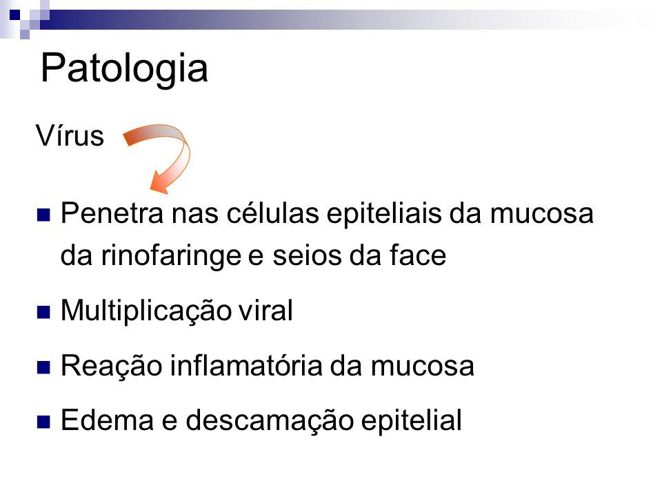 Patologia Vírus. Penetra nas células epiteliais da mucosa da rinofaringe e seios da face. Multiplicação viral.