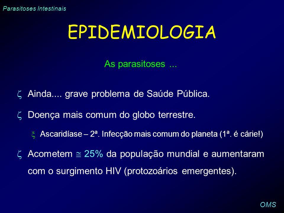 EPIDEMIOLOGIA As parasitoses ...