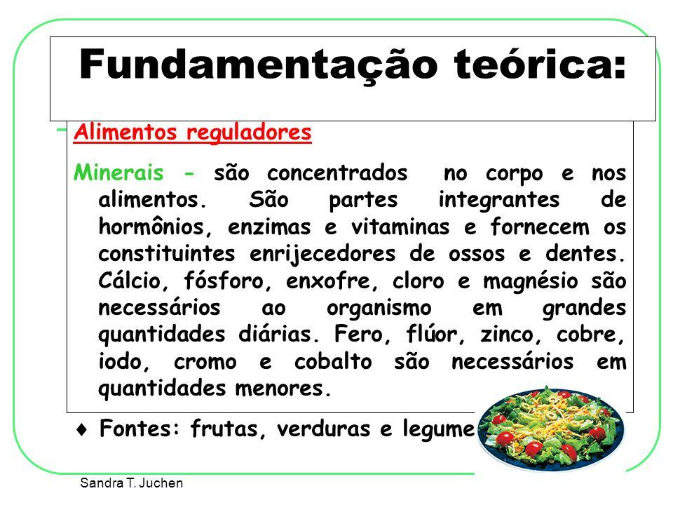 Fundamentação teórica: