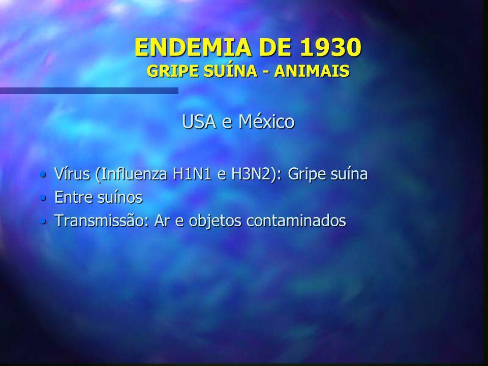 ENDEMIA DE 1930 GRIPE SUÍNA - ANIMAIS