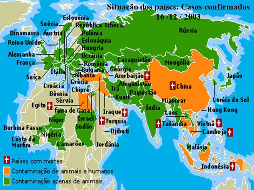 Situação dos países: Casos confirmados 16 /12 / 2003