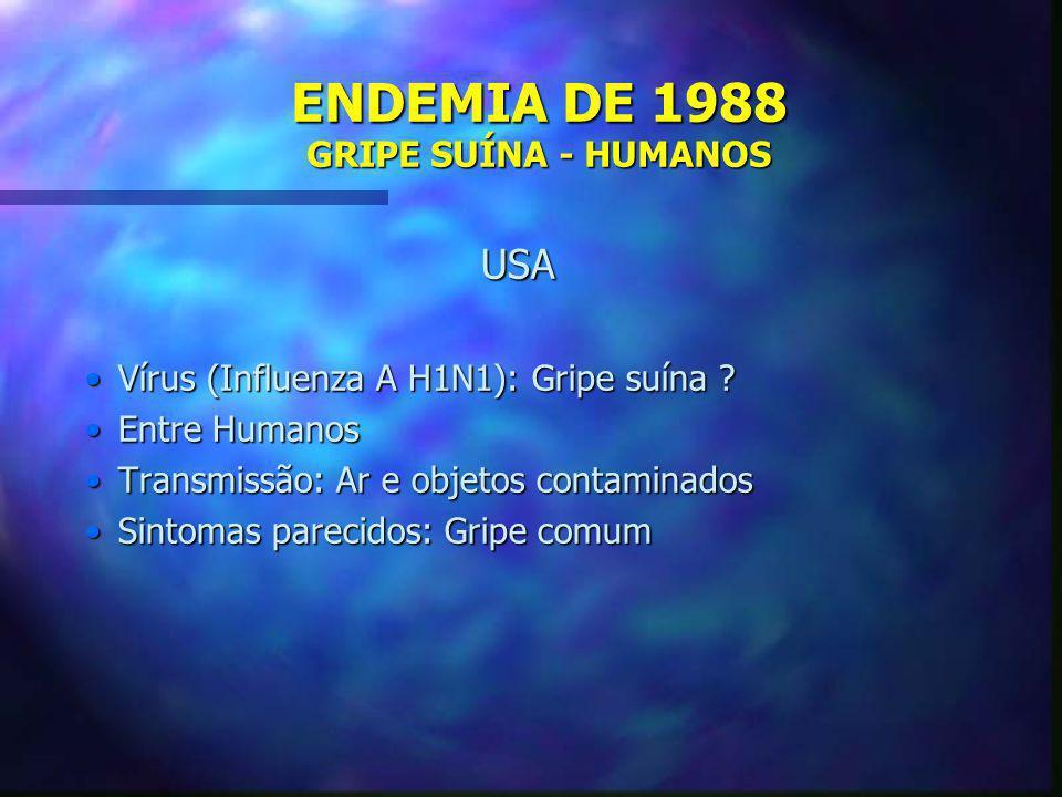 ENDEMIA DE 1988 GRIPE SUÍNA - HUMANOS