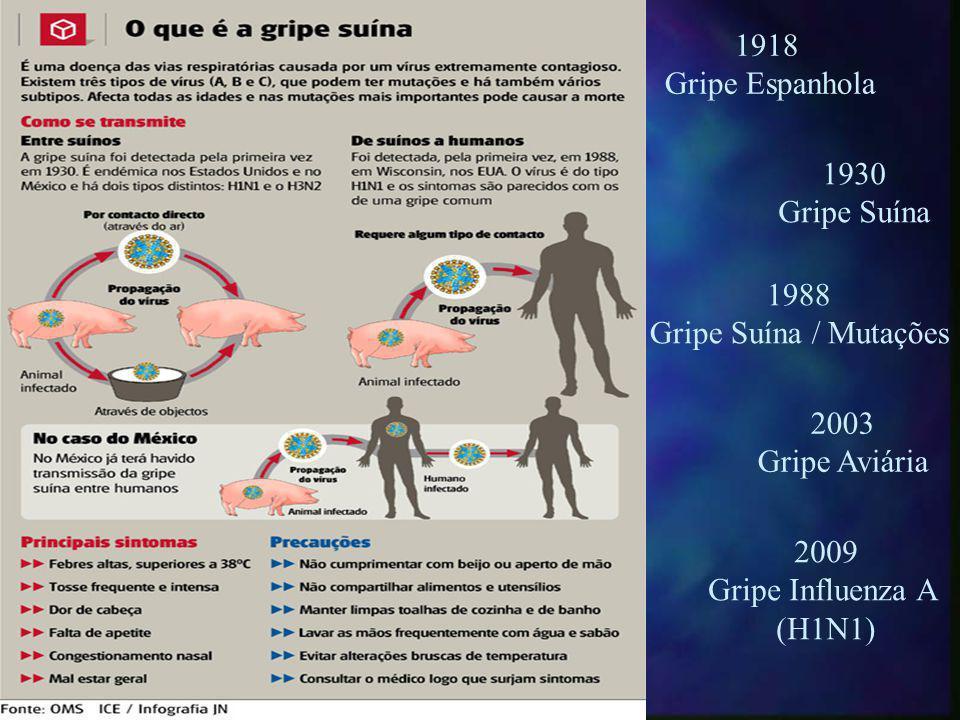 1918 Gripe Espanhola. 1930. Gripe Suína. 1988. Gripe Suína / Mutações. 2003. Gripe Aviária. 2009.