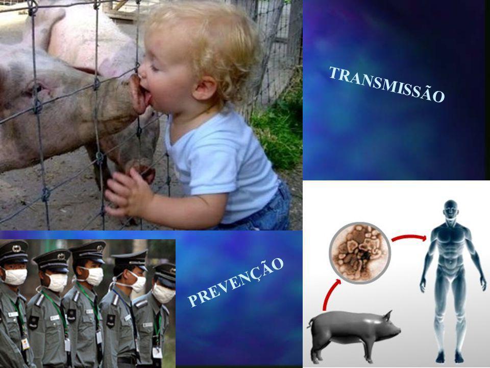 TRANSMISSÃO PREVENÇÃO