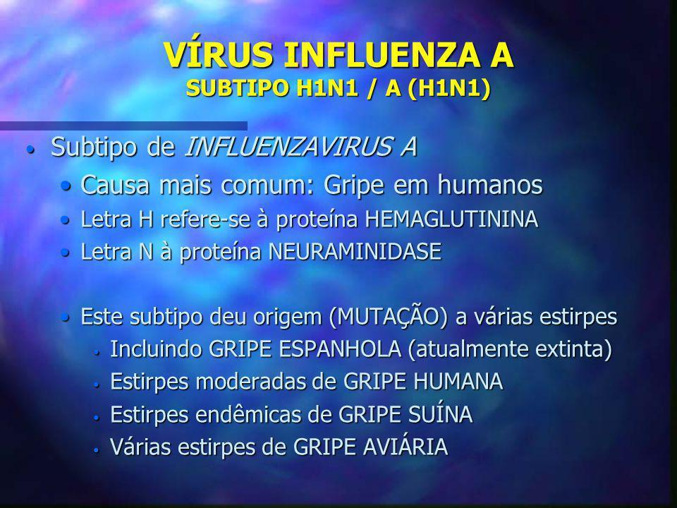 VÍRUS INFLUENZA A SUBTIPO H1N1 / A (H1N1)