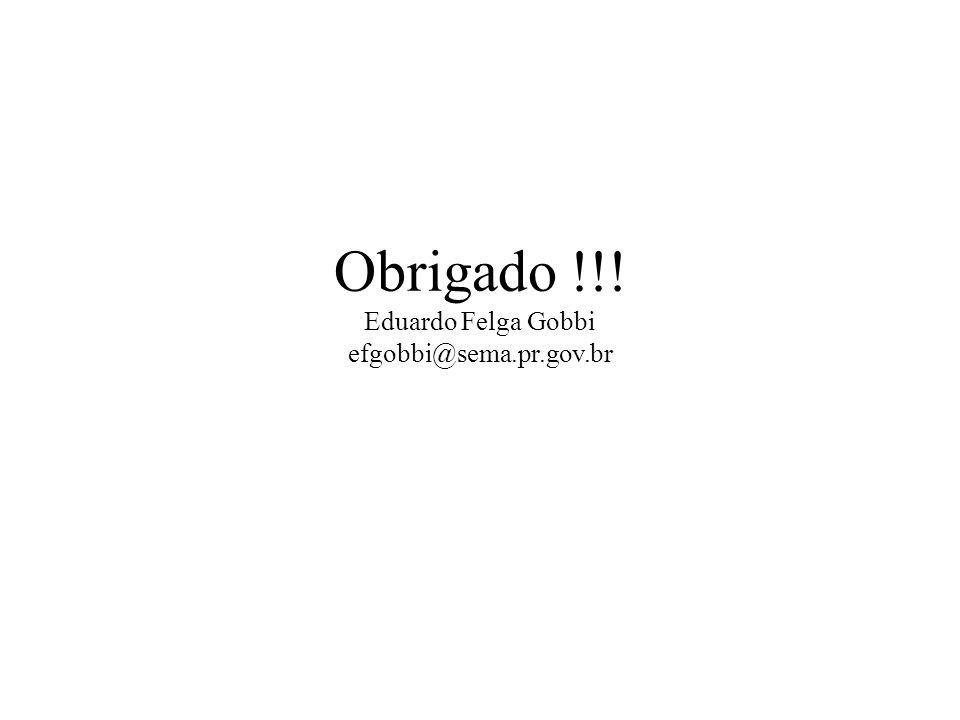 Obrigado !!! Eduardo Felga Gobbi efgobbi@sema.pr.gov.br