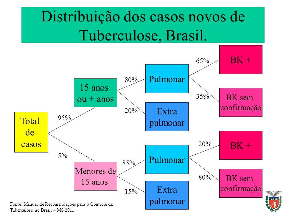 Distribuição dos casos novos de Tuberculose, Brasil.