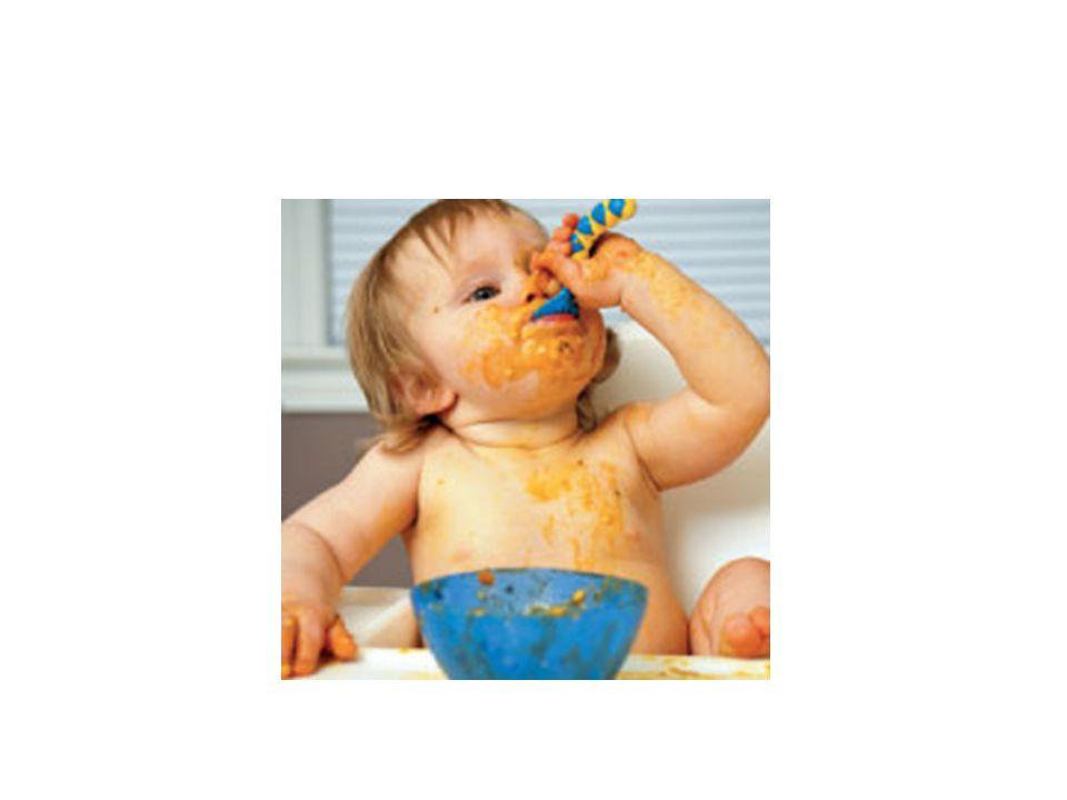 Função renal e gatstrointestinal são suficientemente maduras para metabolizar outros alimentos após nos 4 meses de idade. A exposição a alimentos sólidos e a transição de alimento teor maior de gordura para dieta rica em carboidratos é associada a respostas hormonais (insulina)