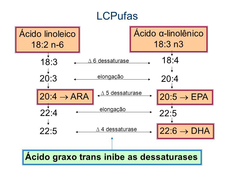 LCPufas Ácido linoleico Ácido α-linolênico 18:2 n-6 18:3 n3 18:4 18:3