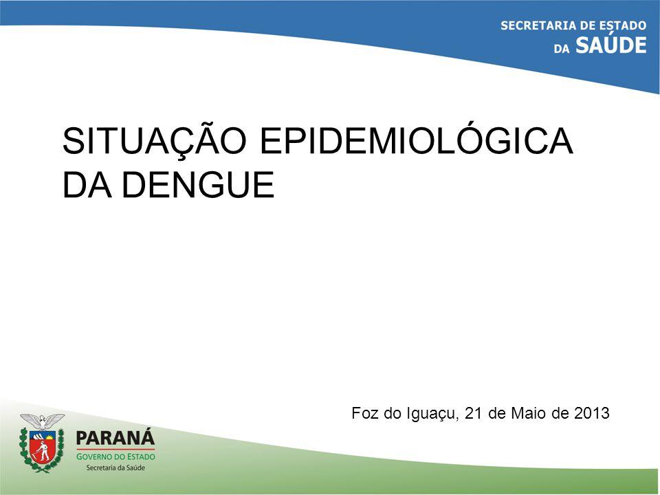 SITUAÇÃO EPIDEMIOLÓGICA DA DENGUE