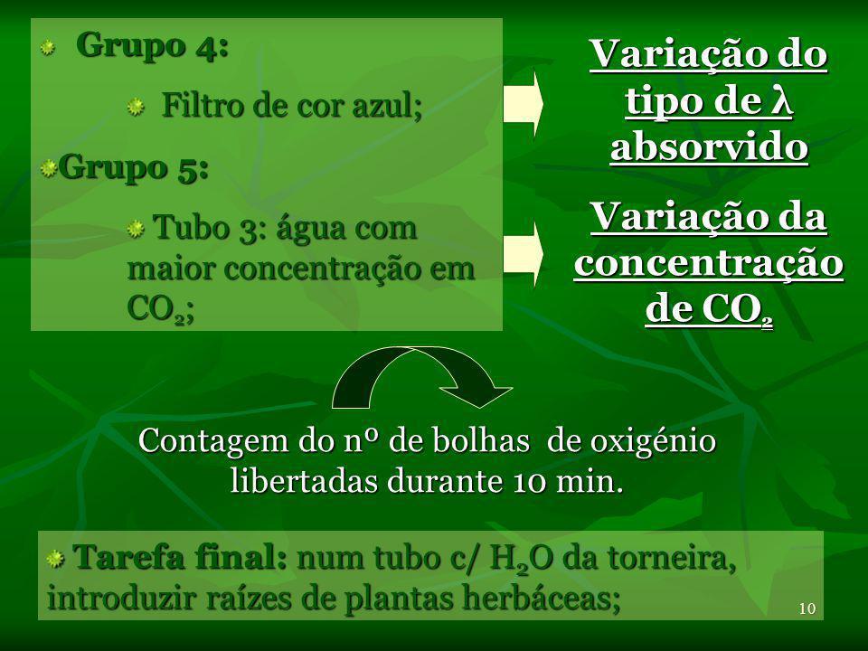 Variação do tipo de λ absorvido Variação da concentração de CO2