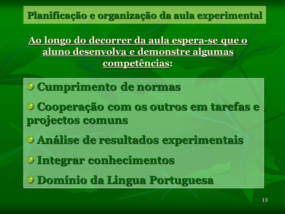 Planificação e organização da aula experimental