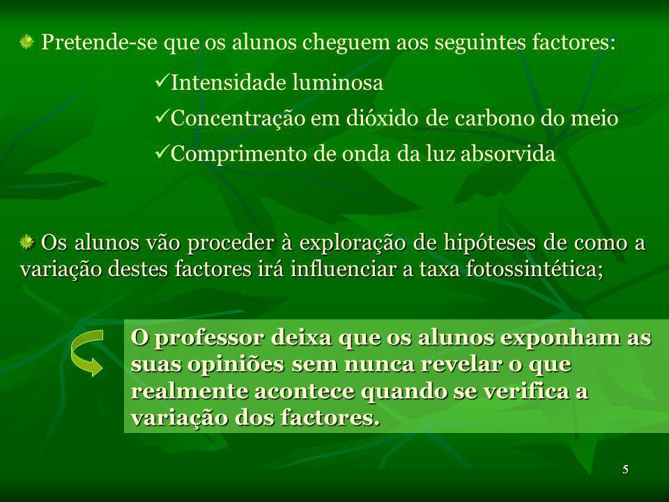 Pretende-se que os alunos cheguem aos seguintes factores: