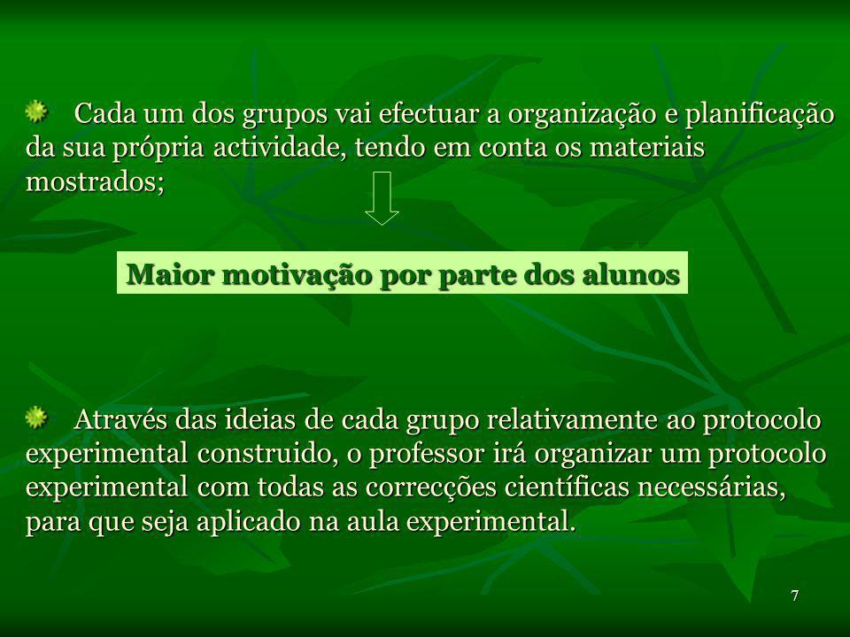 Cada um dos grupos vai efectuar a organização e planificação da sua própria actividade, tendo em conta os materiais mostrados;