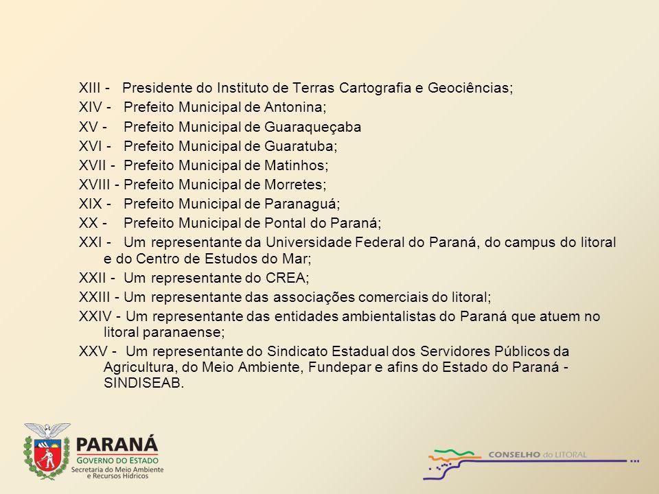 XIII - Presidente do Instituto de Terras Cartografia e Geociências;