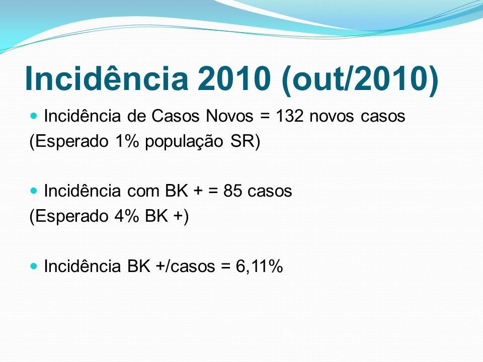Incidência 2010 (out/2010) Incidência de Casos Novos = 132 novos casos