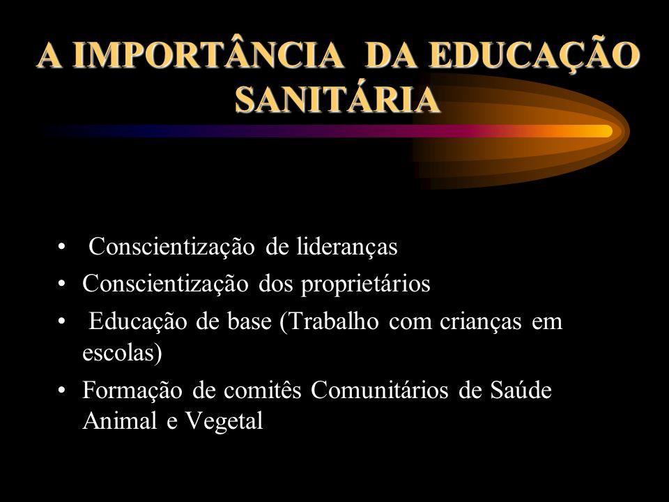 A IMPORTÂNCIA DA EDUCAÇÃO SANITÁRIA