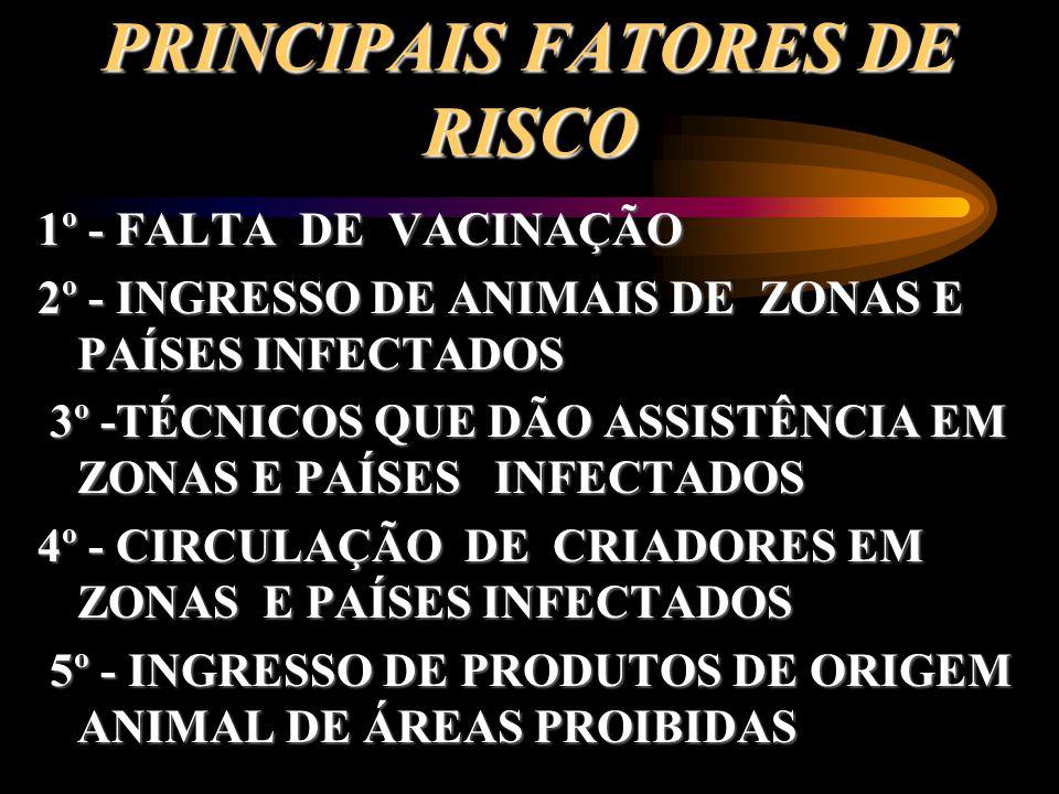 PRINCIPAIS FATORES DE RISCO