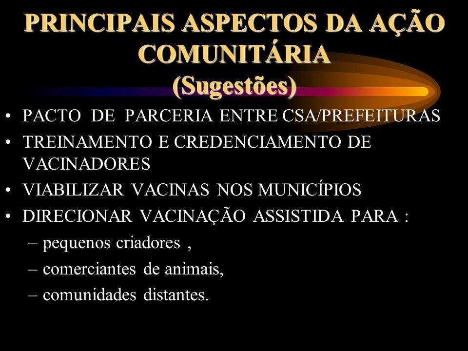 PRINCIPAIS ASPECTOS DA AÇÃO COMUNITÁRIA (Sugestões)