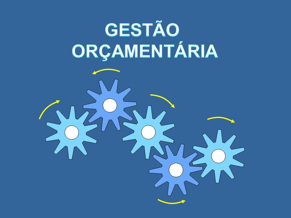 GESTÃO ORÇAMENTÁRIA 3