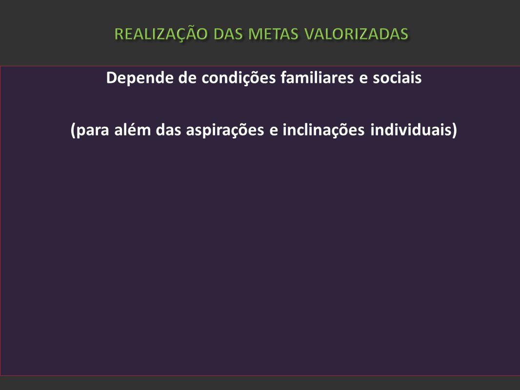 REALIZAÇÃO DAS METAS VALORIZADAS