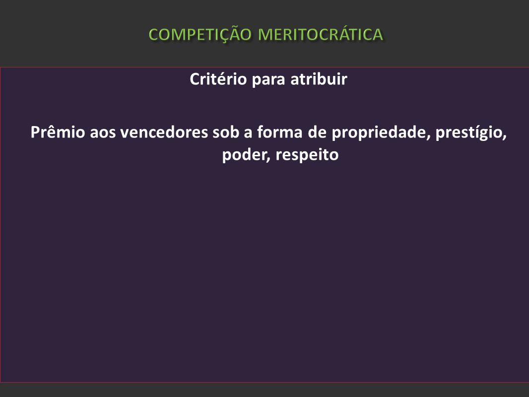 COMPETIÇÃO MERITOCRÁTICA