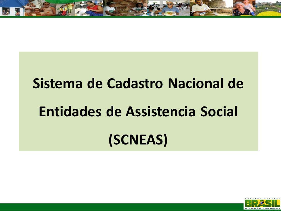 Sistema de Cadastro Nacional de Entidades de Assistencia Social
