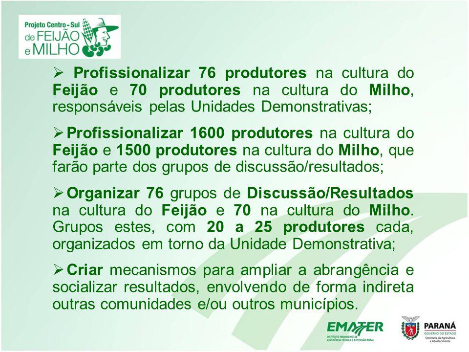 Profissionalizar 76 produtores na cultura do Feijão e 70 produtores na cultura do Milho, responsáveis pelas Unidades Demonstrativas;