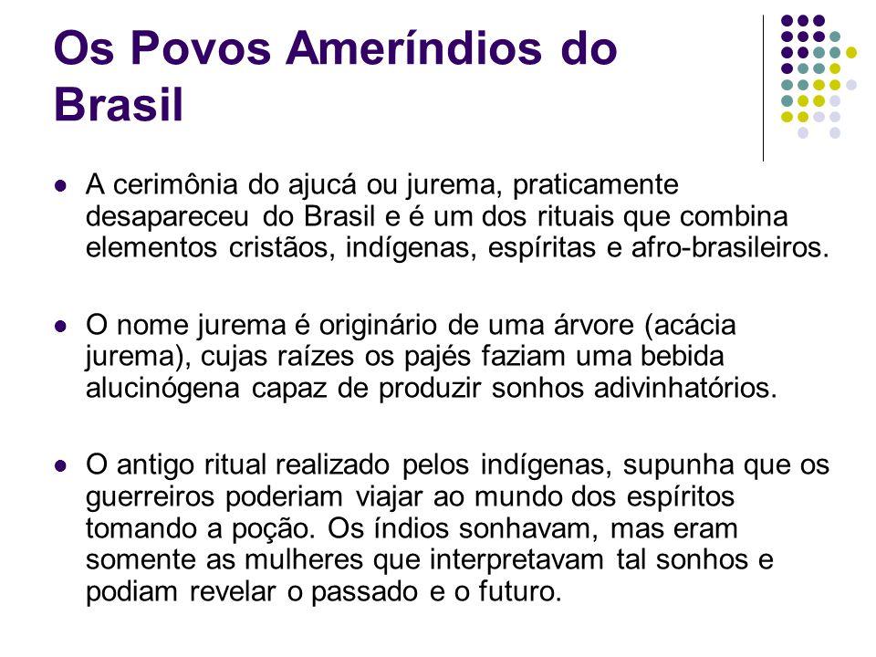 Os Povos Ameríndios do Brasil