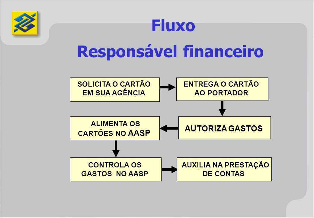 Responsável financeiro