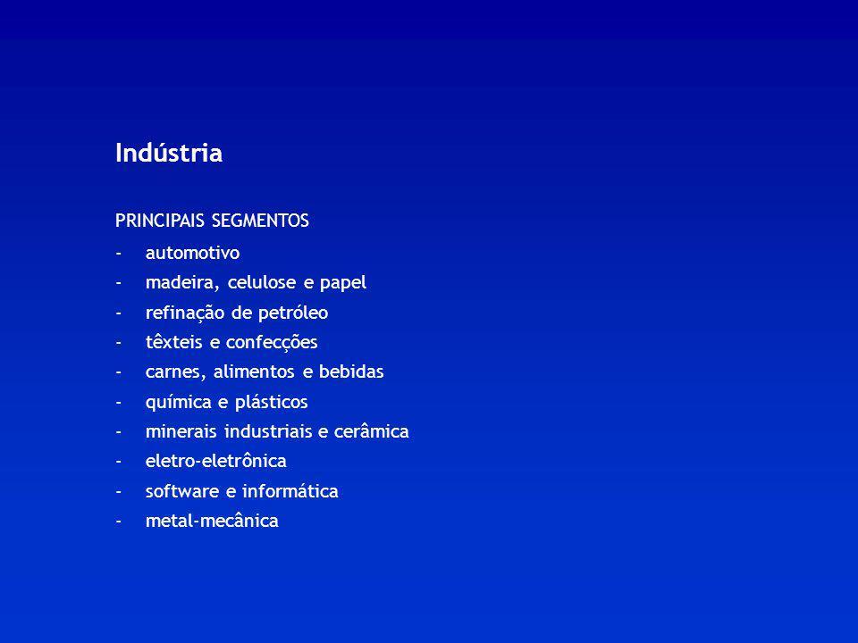 Indústria PRINCIPAIS SEGMENTOS - automotivo