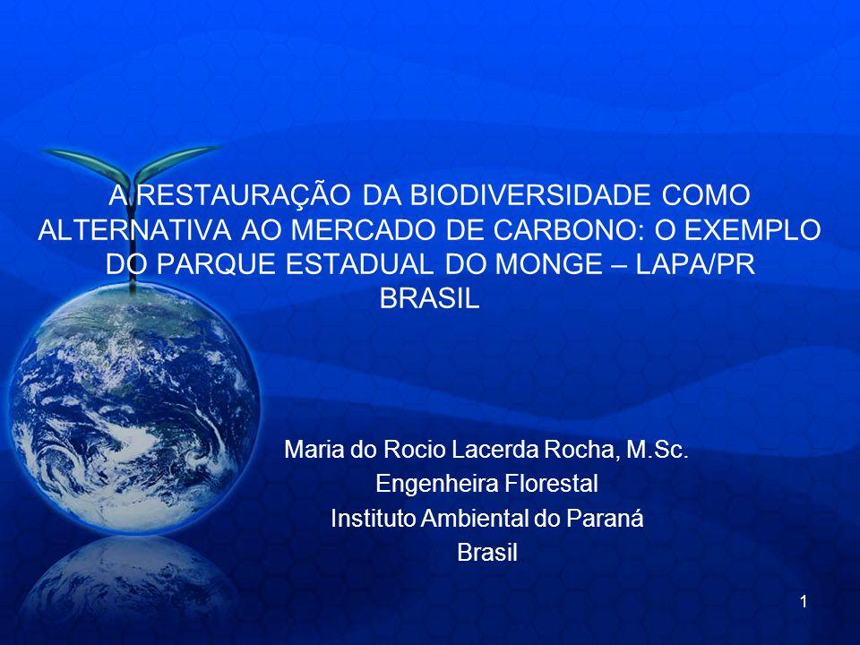 A RESTAURAÇÃO DA BIODIVERSIDADE COMO ALTERNATIVA AO MERCADO DE CARBONO: O EXEMPLO DO PARQUE ESTADUAL DO MONGE – LAPA/PR BRASIL