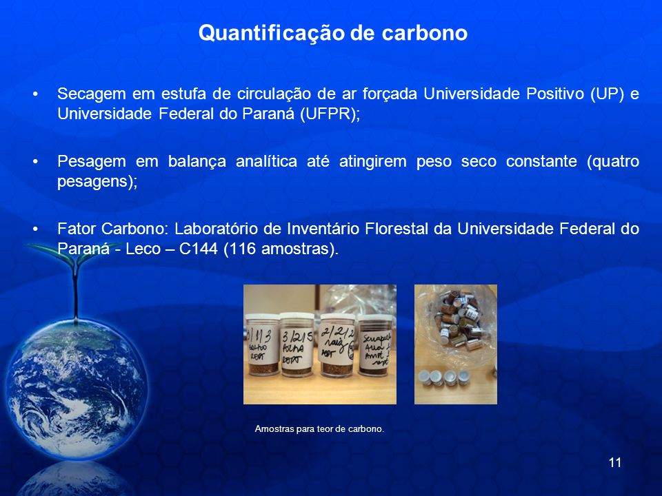Quantificação de carbono