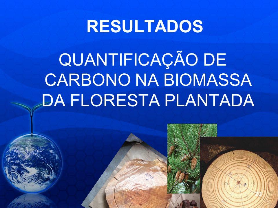 QUANTIFICAÇÃO DE CARBONO NA BIOMASSA DA FLORESTA PLANTADA