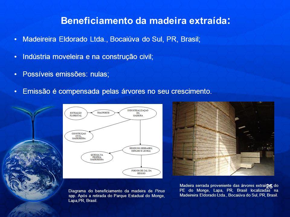 Beneficiamento da madeira extraída: