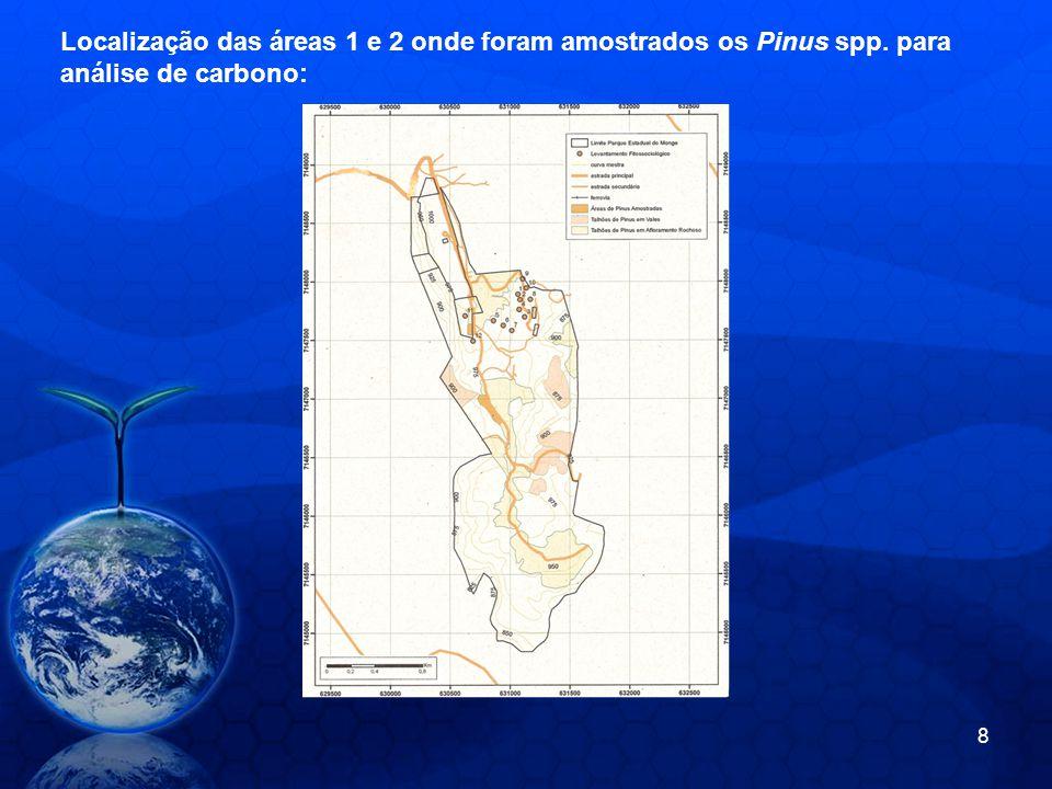 Localização das áreas 1 e 2 onde foram amostrados os Pinus spp