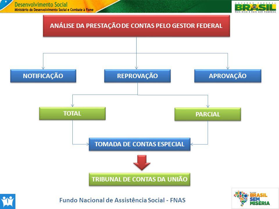 ANÁLISE DA PRESTAÇÃO DE CONTAS PELO GESTOR FEDERAL