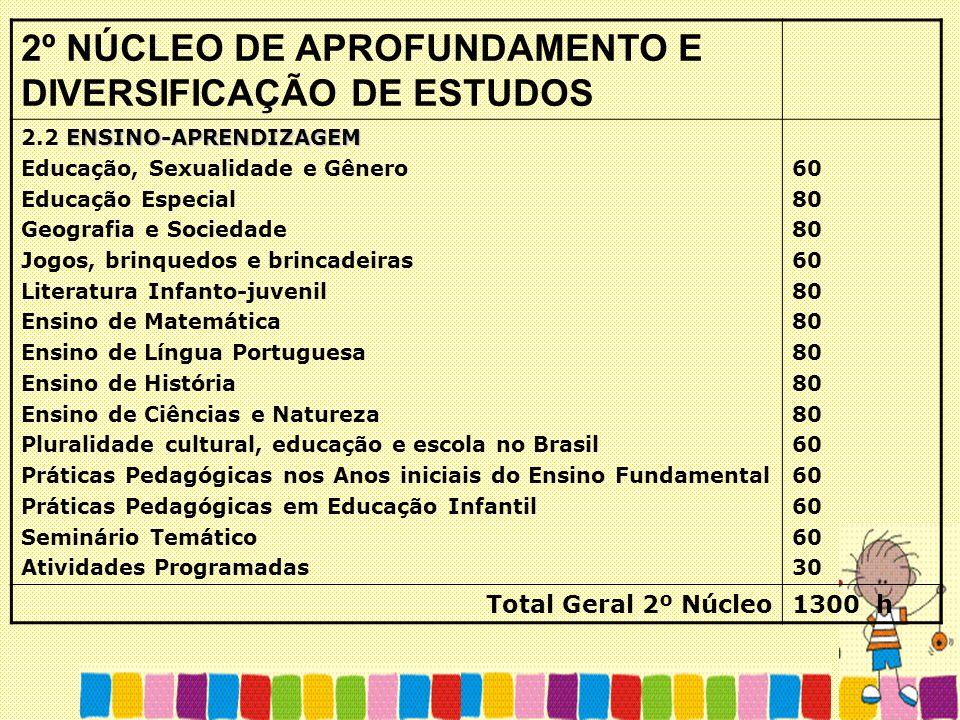 2º NÚCLEO DE APROFUNDAMENTO E DIVERSIFICAÇÃO DE ESTUDOS