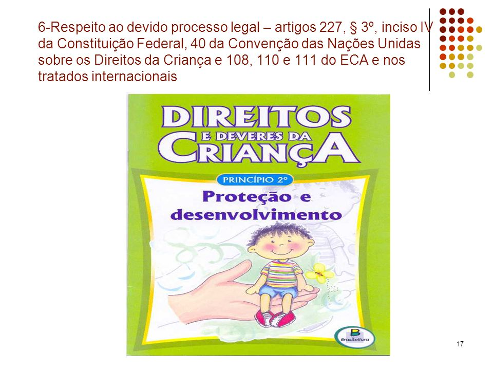 6-Respeito ao devido processo legal – artigos 227, § 3º, inciso IV da Constituição Federal, 40 da Convenção das Nações Unidas sobre os Direitos da Criança e 108, 110 e 111 do ECA e nos tratados internacionais