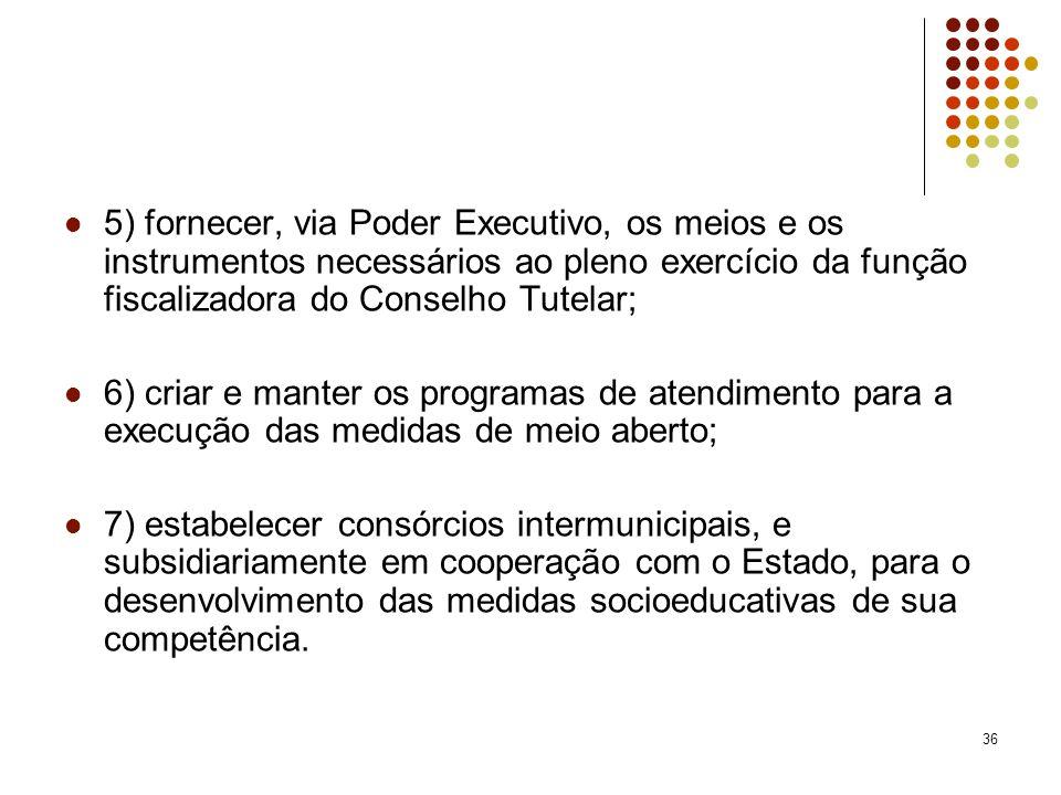 5) fornecer, via Poder Executivo, os meios e os instrumentos necessários ao pleno exercício da função fiscalizadora do Conselho Tutelar;