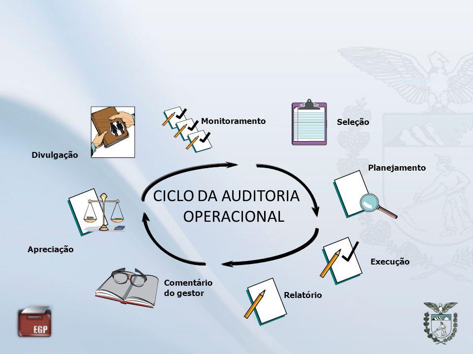 CICLO DA AUDITORIA OPERACIONAL