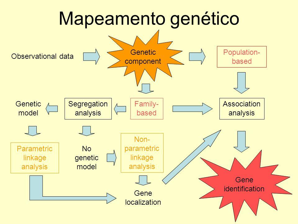 Mapeamento genético Genetic component Population-based