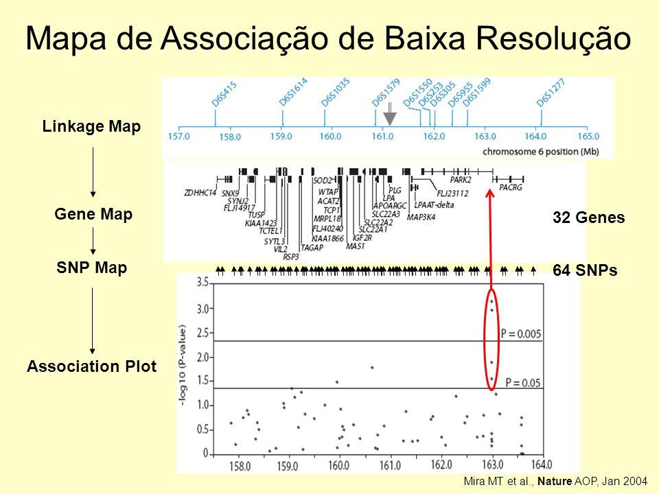 Mapa de Associação de Baixa Resolução