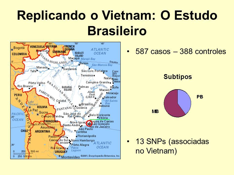 Replicando o Vietnam: O Estudo Brasileiro