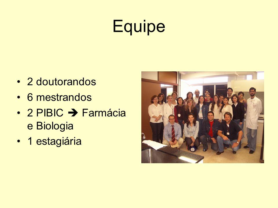 Equipe 2 doutorandos 6 mestrandos 2 PIBIC  Farmácia e Biologia