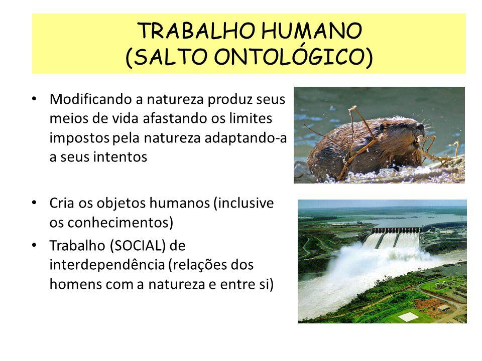 TRABALHO HUMANO (SALTO ONTOLÓGICO)