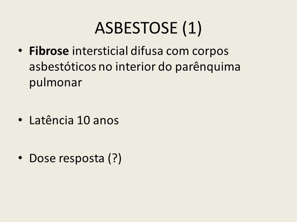 ASBESTOSE (1) Fibrose intersticial difusa com corpos asbestóticos no interior do parênquima pulmonar.