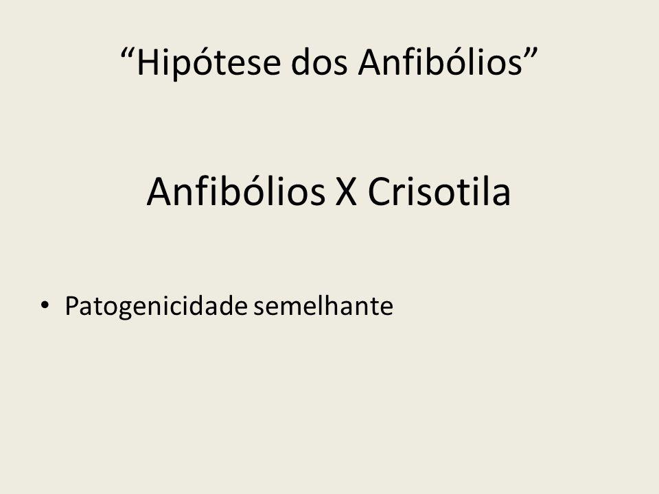 Hipótese dos Anfibólios