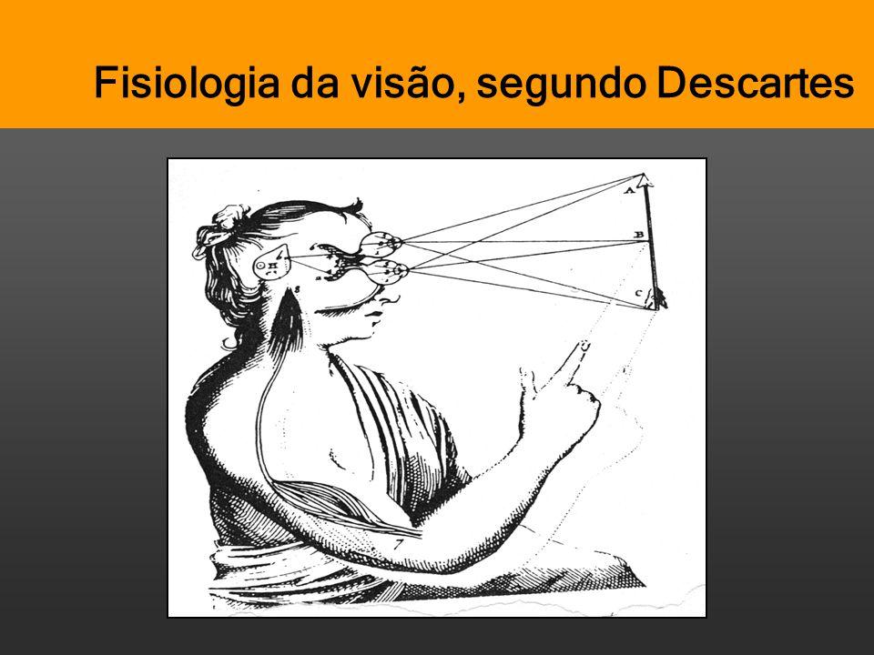 Fisiologia da visão, segundo Descartes