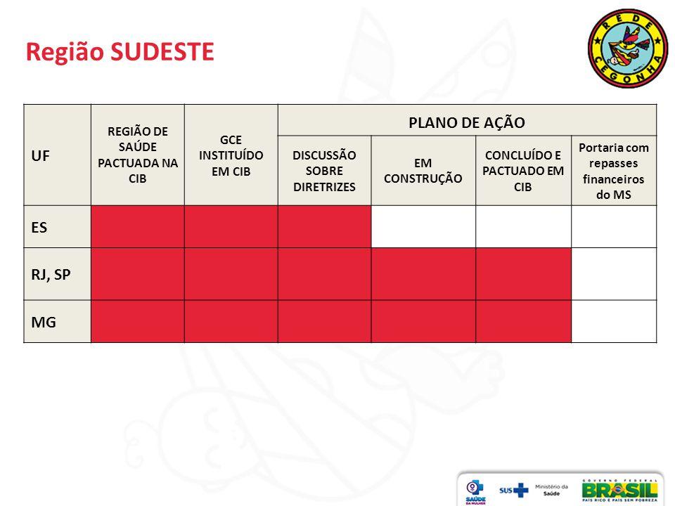 Região SUDESTE PLANO DE AÇÃO UF ES RJ, SP MG
